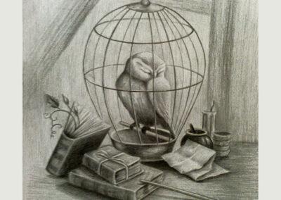 Sowa – rysunek ołówkiem